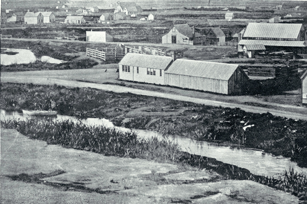 Black and white photo of Victoria Square, circa 1858