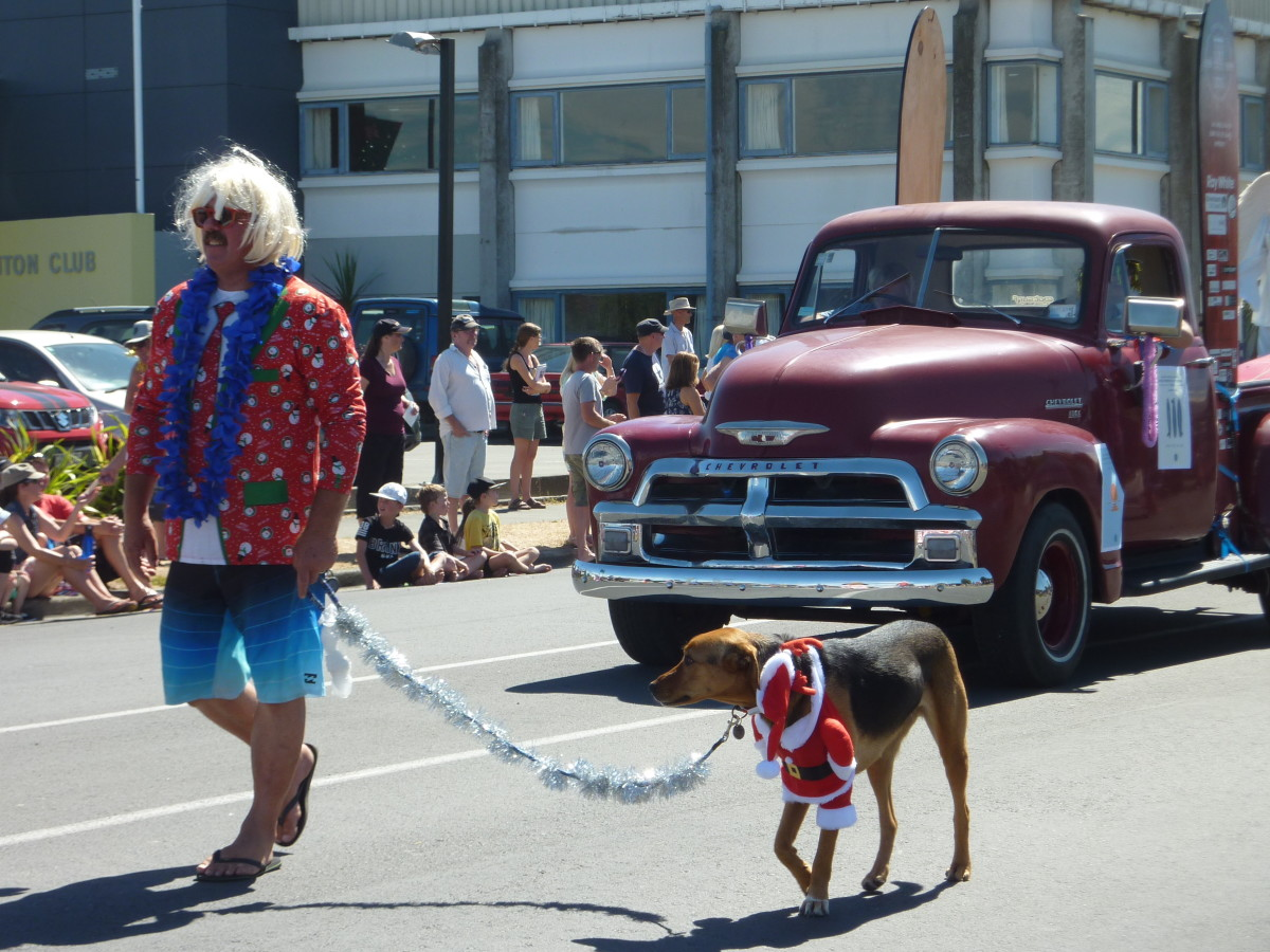 Colour photo of a man leading a dog dressed as Santa in a parade, 2017